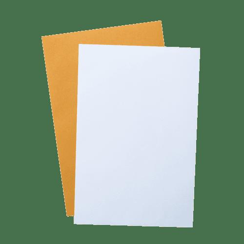 blank stock